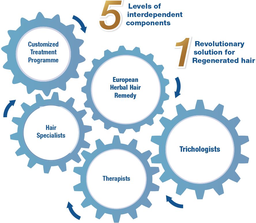 5 levels of interdependent components